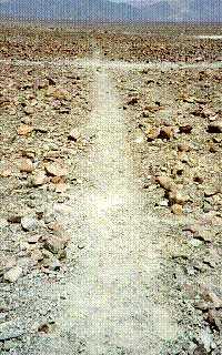 Fig 23. Nasca Lines (2010)