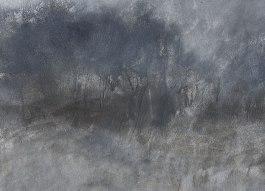 Fig 3. Landscape L712 (2013)