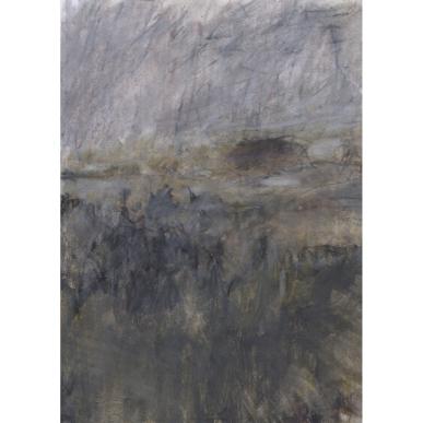 Fig 1. Landscape L671 (2013)