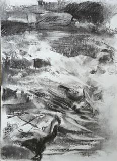 Fig 11. River Dart I (2016)