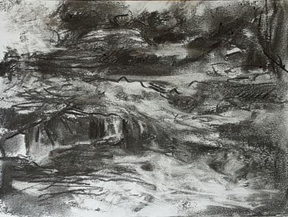 Fig 10. River Dart II (2016)